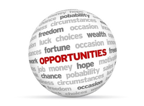Organizing to realize new opportunities